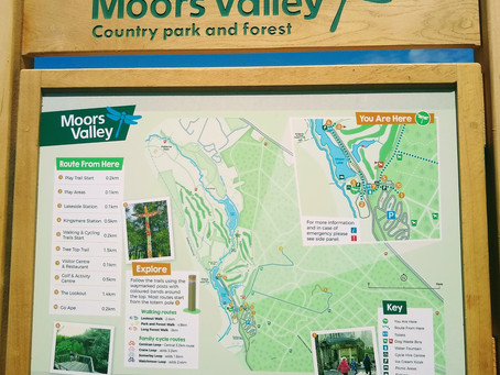 Moors Valley Country Park - Family Woodland Day Out