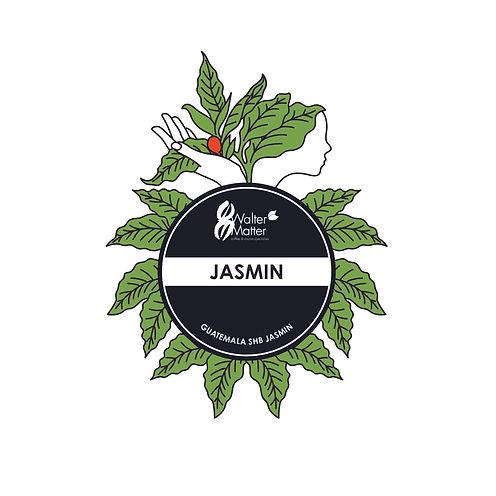 2020_logo_jasmin_couleur.jpg