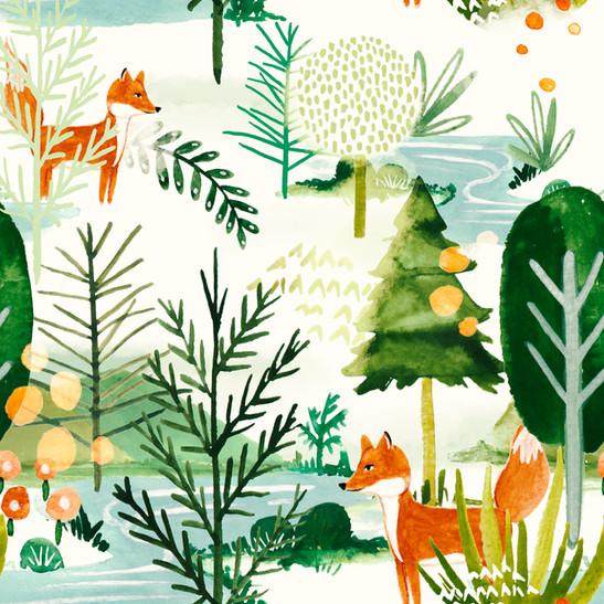 floresta aprov.jpg