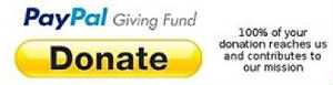 paypal-giving-fund-button.jpg.w300h77.jp
