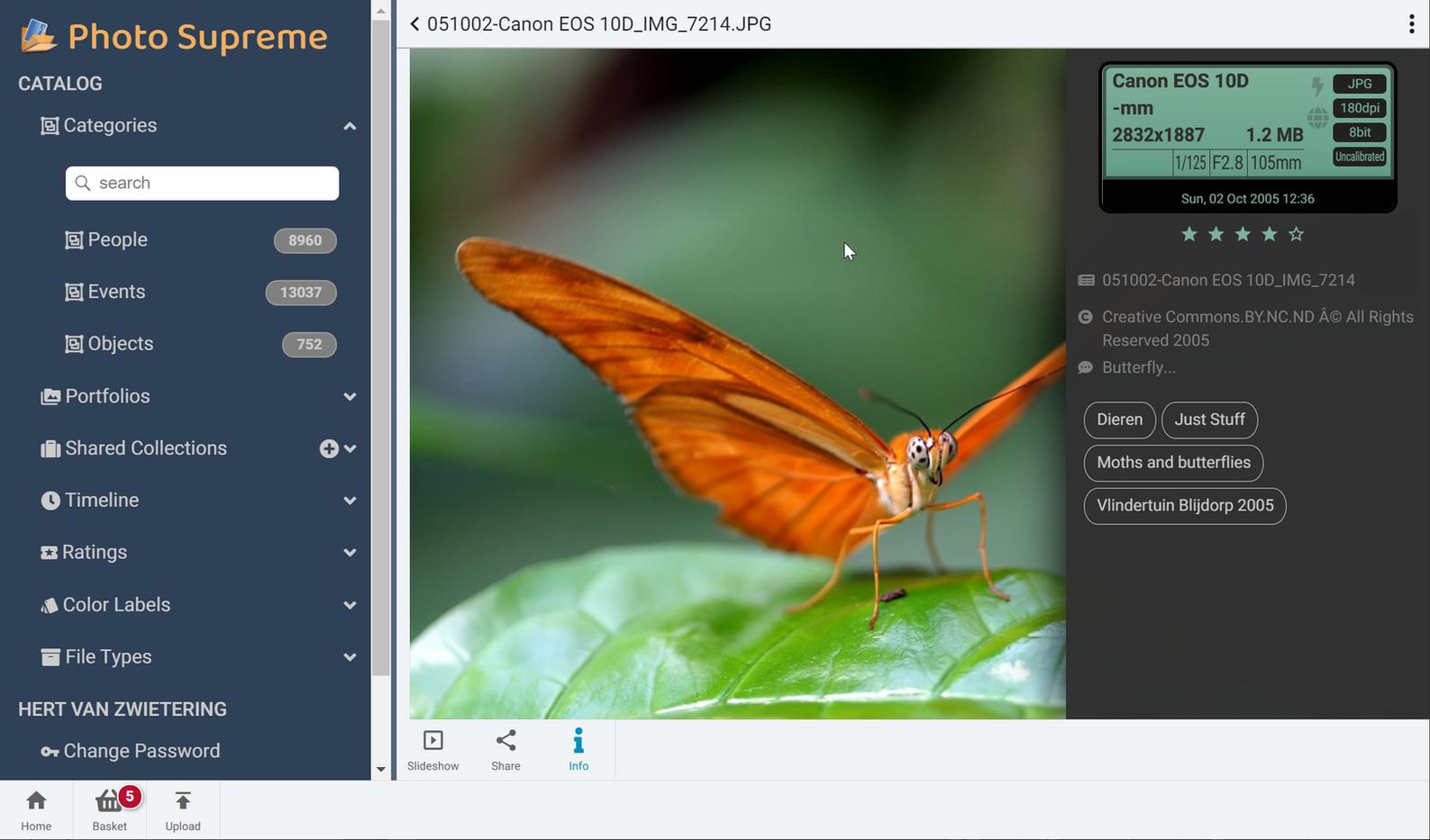 PSO_Beta_Screenshot3.png