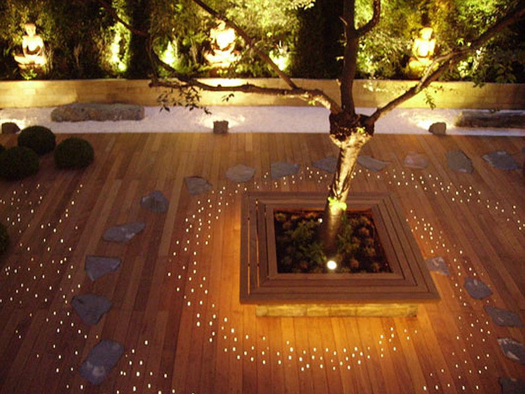 Dart Lights in Situ
