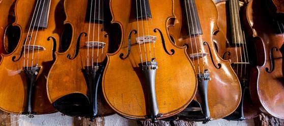 Atelier de violon 1