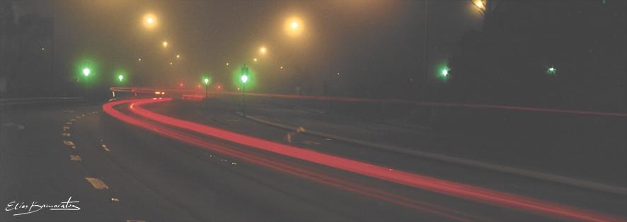 Katoomba Fog