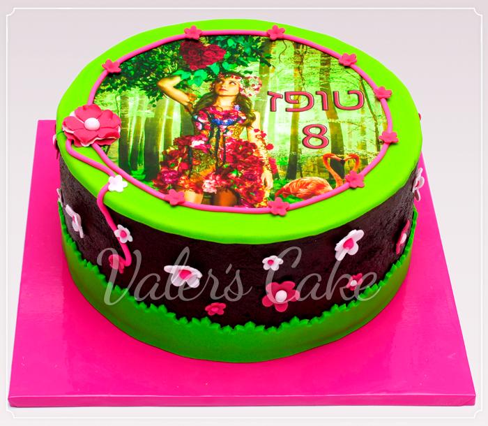 עוגת גאליס-8