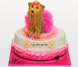 עוגת-כלב-לולה