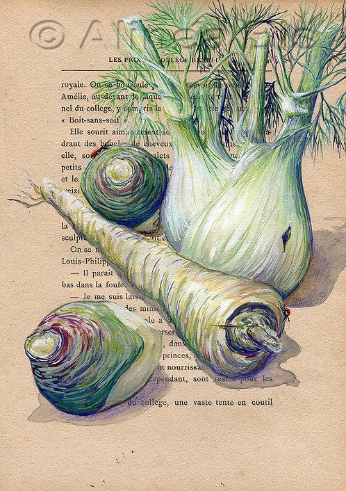 Légumes d'antan