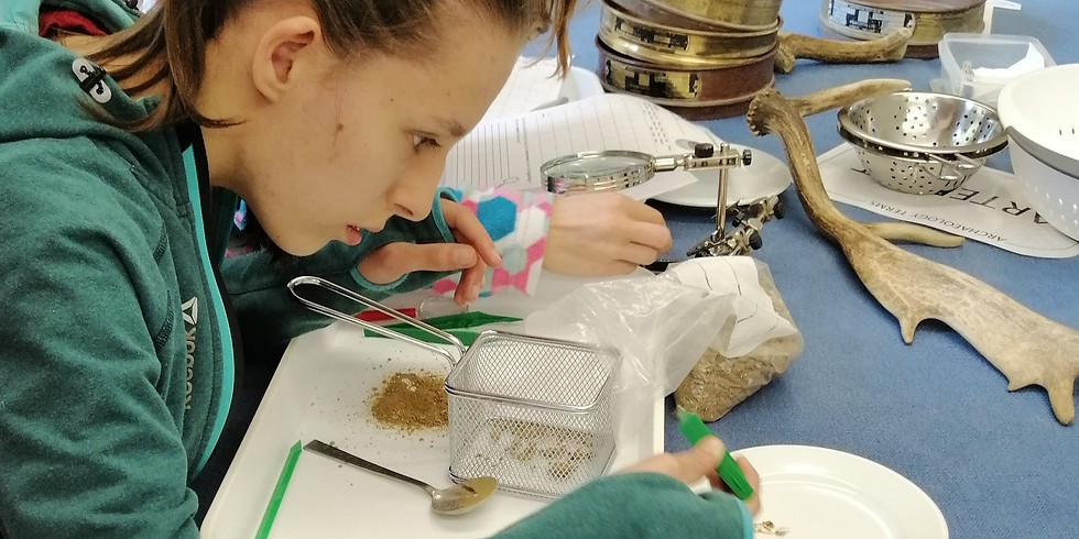 What is Environmental Archaeology? (Child and Adult Workshop)