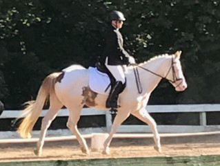 Ambassador Interviews: Kristy on Handling Horse Show Nerves!