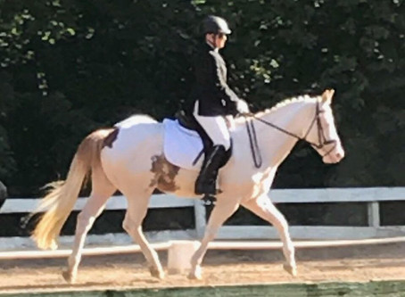 Ambassador Interviews: Kristy on Handling Horse Show Nerves!