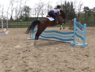 Ambassador Interviews: Sabrina on Being an Equestrian in the Military!