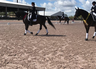 Ambassador Interview: Shannon on Being a Professional Groom!