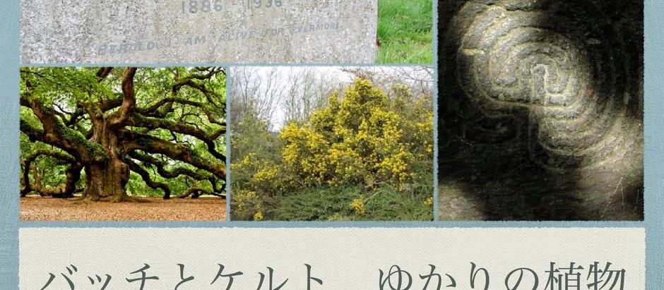 11/14;28;12/12;26◆バッチとケルト、ゆかりの植物