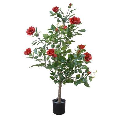 plant17.jpg