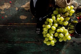 Degustazioni Vini