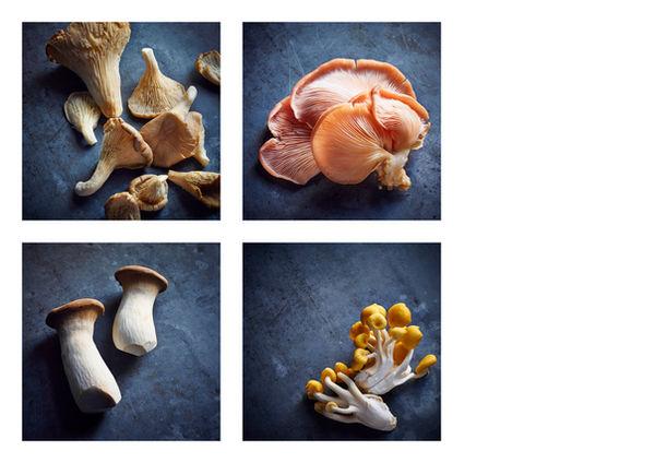 Ingredients - Mushroom