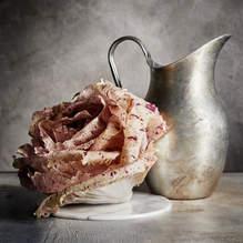 Radiccio Rose