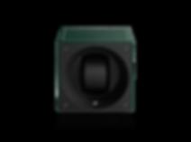 SK01-CV005-face.png