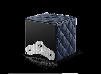 SK01-Cv-couture-bleu-Back.png