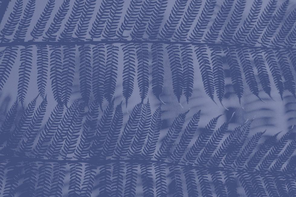 Leaf%20Dancer%20II_edited.jpg