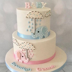 Baby Shower Reveal