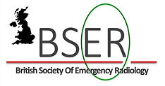 BSER official logo