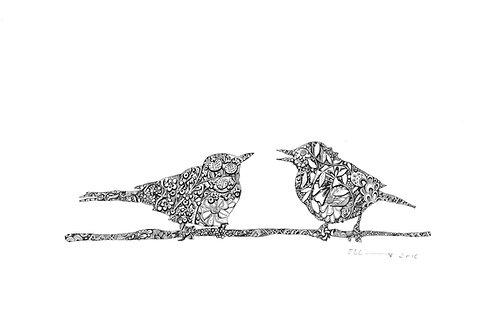 Birds Yana and Yaku