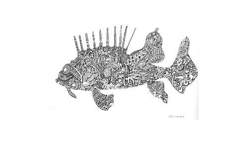 Fish Iana