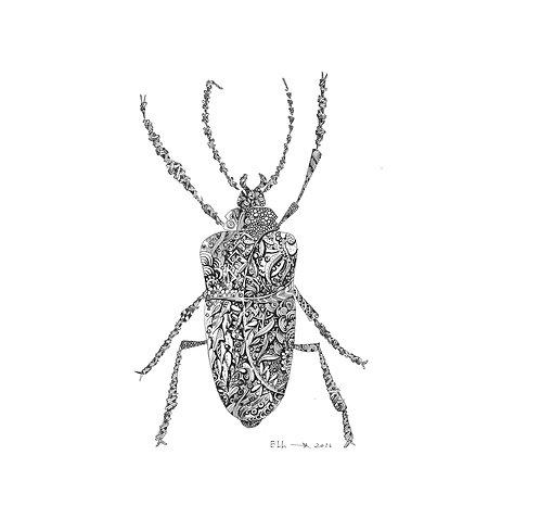 Beetle Burgo
