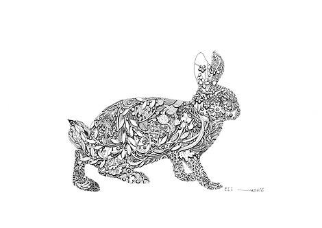 Hare Sigi