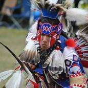 Indigenous Theme