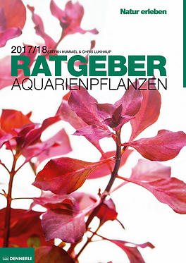 DENNERLE Aquarienpflanzen - Ratgeber