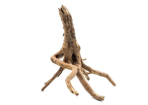 Mini Root je 100g