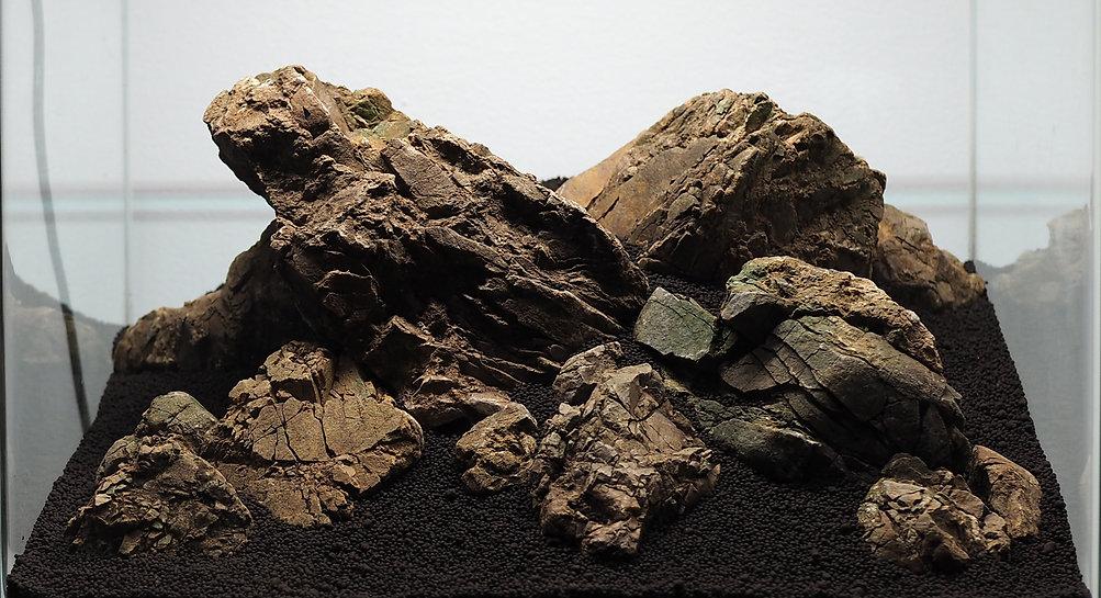 Elatine and Rock
