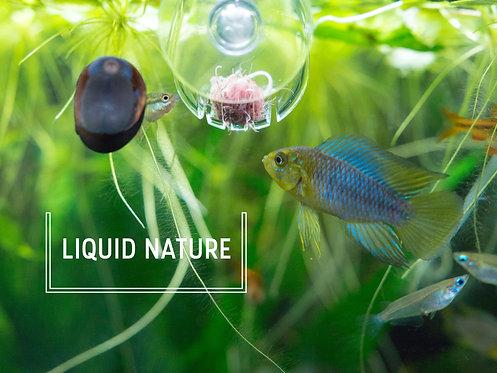 Liquid Nature Feed Glass