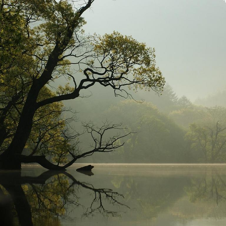 Tomando el pulso de la transparencia en los recursos naturales: Resultados del ITRN