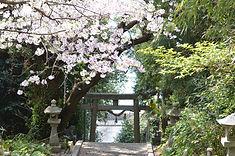 大島神社④.JPG