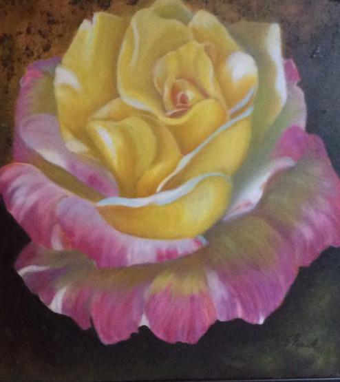 Rose coloré