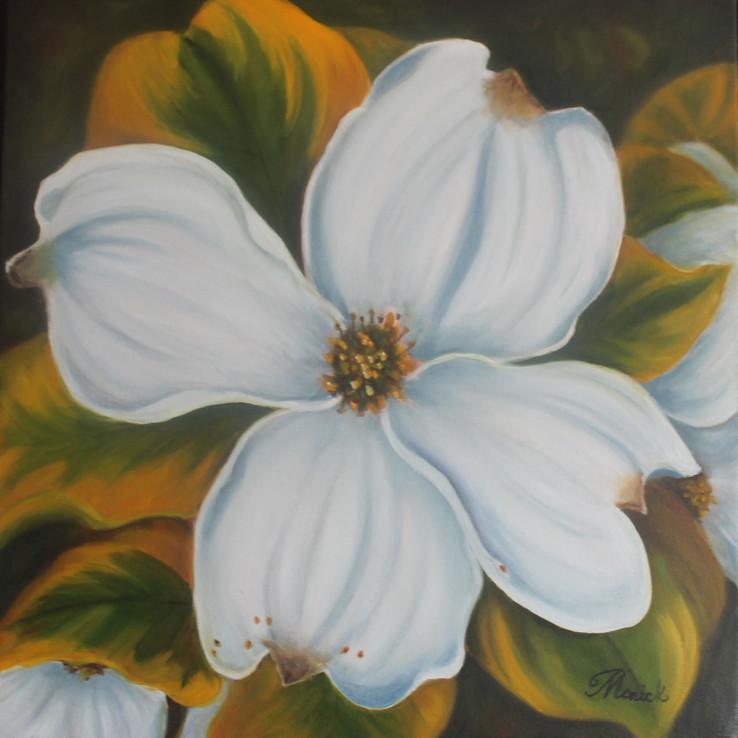Fleur de Calvados
