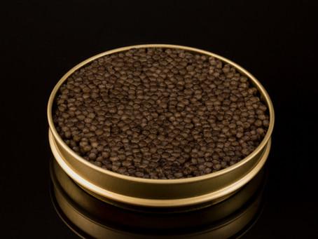 Caviar Beluga Iraní