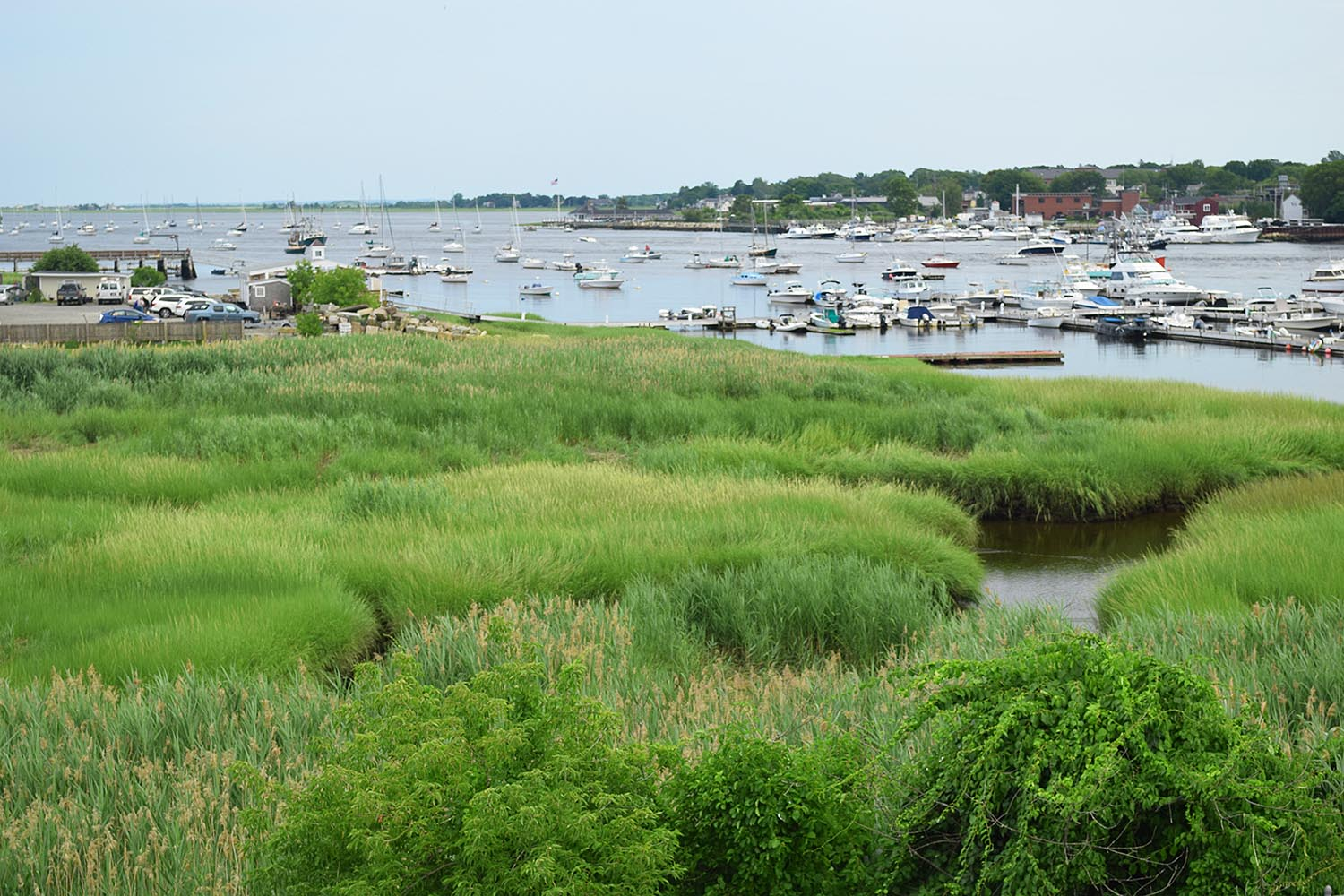Newburyport Harbor