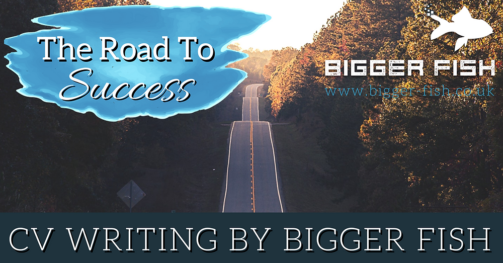 The Road to Success - CV Writing for Switched on Professionals