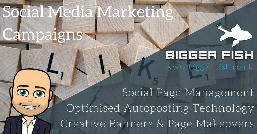 Social Media Marketing Campaigns by Bigger Fish