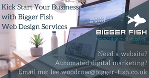 Bigger Fish Website Design Services Great Yarmouth