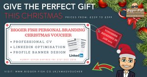 Christmas CV & LinkedIn Vouchers by Bigger Fish