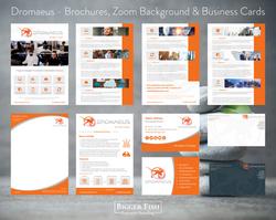Dromaeus - Brochures%2C Zoom Background