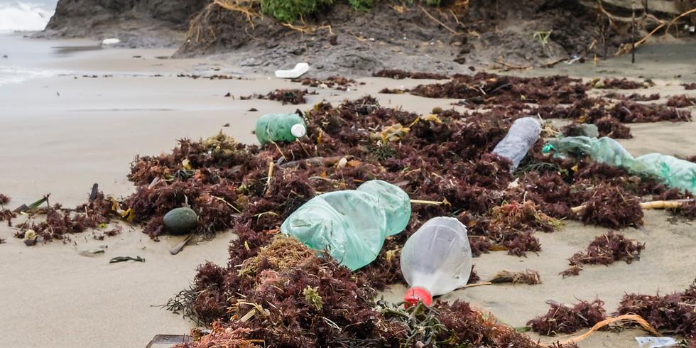 Seminar - Plastics in the Environment
