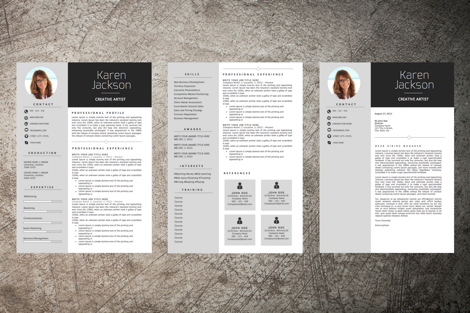 Professional CV Design 2