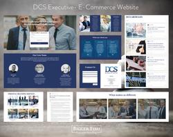 DCS Executive- E-Commerce Website by Big