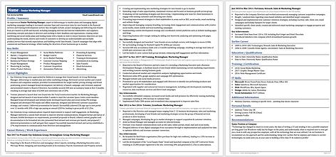 Bigger Fish High-End ATS 3 Page CV Template